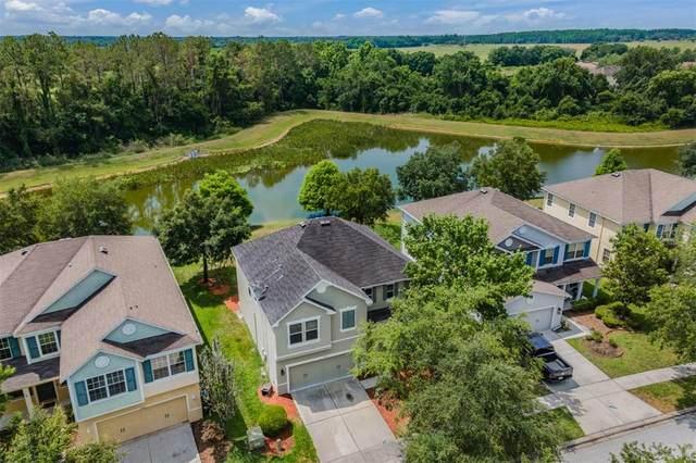 7200 Bridgeview Drive, Wesley Chapel, FL 33545 (MLS #T3306820) :: Delgado Home Team at Keller Williams