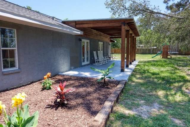 5185 Bone Lane, Brooksville, FL 34604 (MLS #T3306829) :: Team Pepka