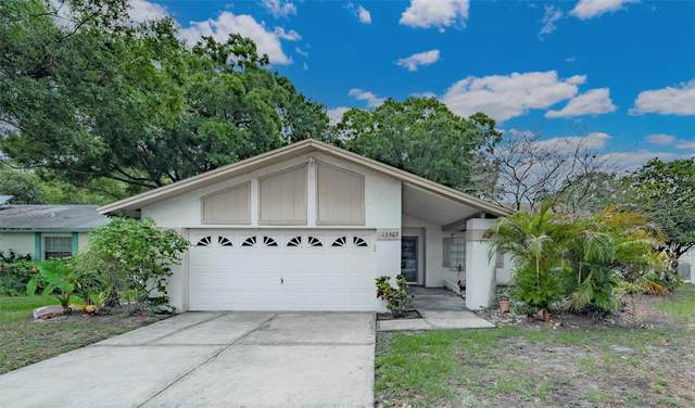 13507 Capitol Drive, Tampa, FL 33613 (MLS #T3306869) :: Carmena and Associates Realty Group