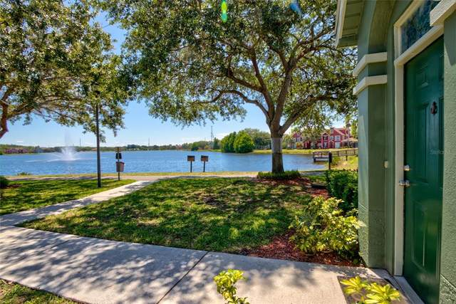 9404 Lake Chase Island Way, Tampa, FL 33626 (MLS #T3306891) :: Delgado Home Team at Keller Williams