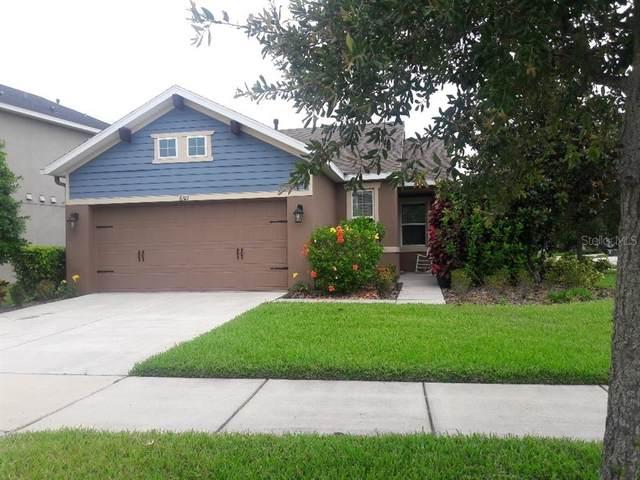 6511 Salt Creek Avenue, Apollo Beach, FL 33572 (MLS #T3306897) :: Delgado Home Team at Keller Williams