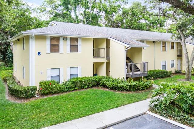 3001 58TH Avenue S #803, St Petersburg, FL 33712 (MLS #T3306905) :: Coldwell Banker Vanguard Realty