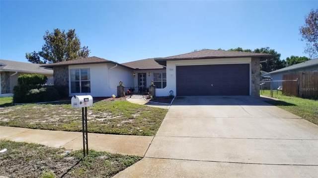 7004 Bramblewood Drive, Port Richey, FL 34668 (MLS #T3306912) :: Team Borham at Keller Williams Realty