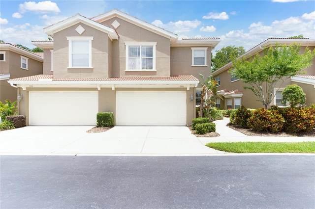 4968 Anniston Circle, Tampa, FL 33647 (MLS #T3306940) :: Team Borham at Keller Williams Realty
