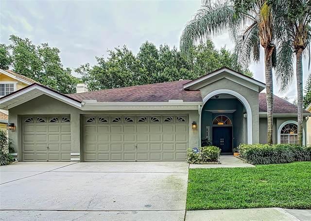 17723 Hampshire Oak Drive, Tampa, FL 33647 (MLS #T3306941) :: Delgado Home Team at Keller Williams