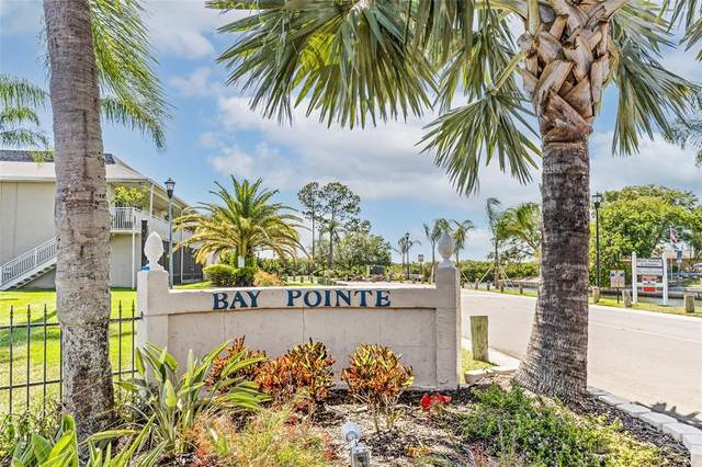 8811 Bay Pointe Drive #201, Tampa, FL 33615 (MLS #T3306949) :: Team Pepka