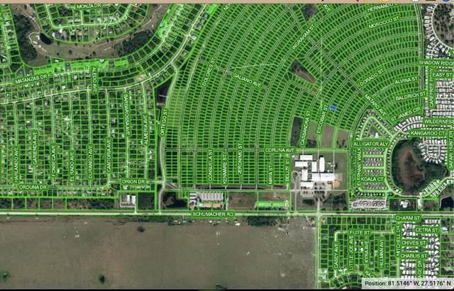 4617 Escobar Street, Sebring, FL 33872 (MLS #T3306950) :: CENTURY 21 OneBlue