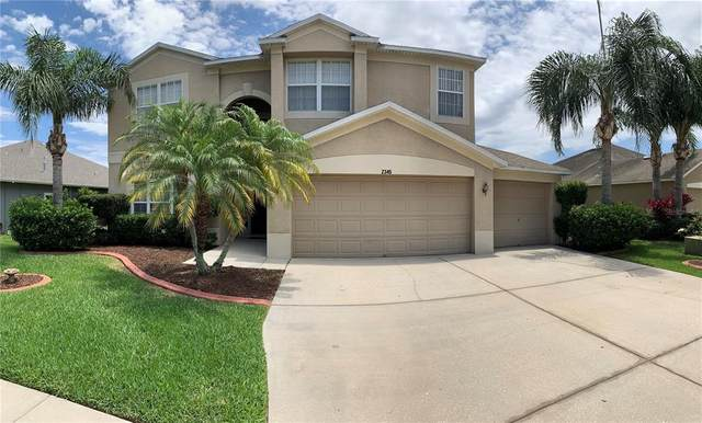 2345 Brinley Drive, Trinity, FL 34655 (MLS #T3306962) :: Armel Real Estate