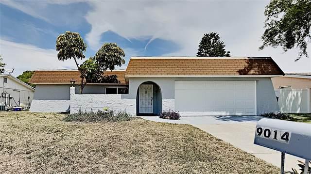 9014 Cochise Lane, Port Richey, FL 34668 (MLS #T3306977) :: Pristine Properties