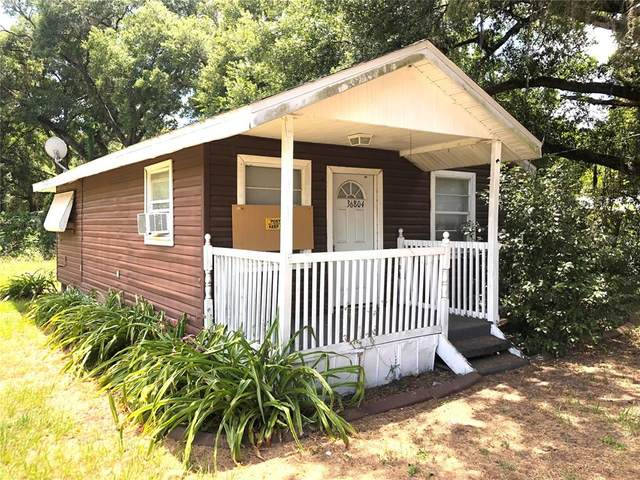 36804 Elm Avenue, Dade City, FL 33525 (MLS #T3306986) :: Your Florida House Team