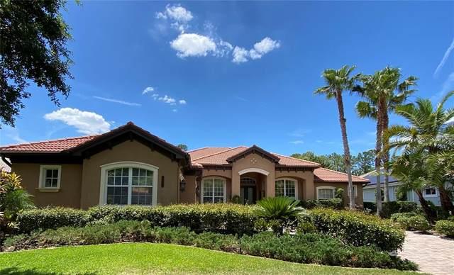 8456 Dunham Station Drive, Tampa, FL 33647 (MLS #T3306987) :: Team Borham at Keller Williams Realty