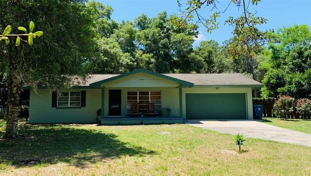 34456 Sunridge Drive, Dade City, FL 33523 (MLS #T3306995) :: Premium Properties Real Estate Services