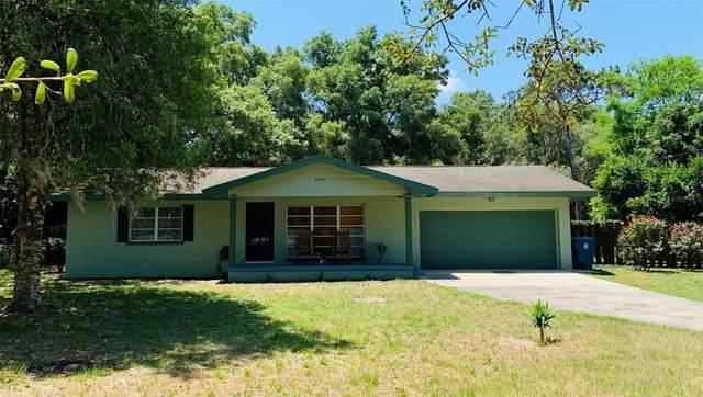 34456 Sunridge Drive, Dade City, FL 33523 (MLS #T3306995) :: The Kardosh Team