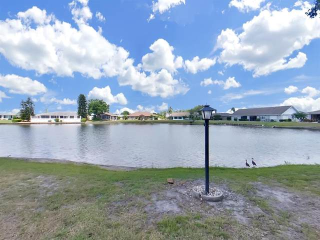 109 Cactusflower Ln, Sun City Center, FL 33573 (MLS #T3307037) :: Team Borham at Keller Williams Realty