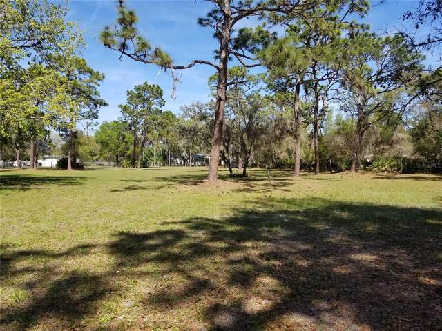 7606 W County Line Road, Odessa, FL 33556 (MLS #T3307040) :: Baird Realty Group