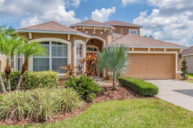 11482 Weston Course Loop, Riverview, FL 33579 (MLS #T3307064) :: The Duncan Duo Team