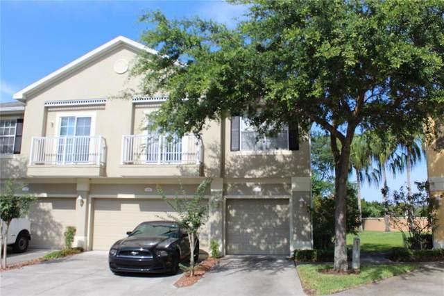 6753 Breezy Palm Drive, Riverview, FL 33578 (MLS #T3307120) :: The Duncan Duo Team