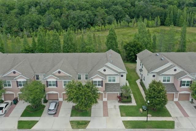 26553 Castleview Way, Wesley Chapel, FL 33544 (MLS #T3307148) :: Team Bohannon