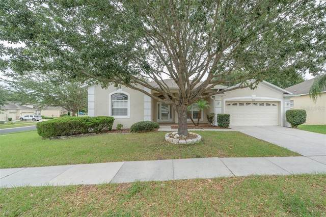 14565 Deacon Court, Spring Hill, FL 34609 (MLS #T3307235) :: The Kardosh Team