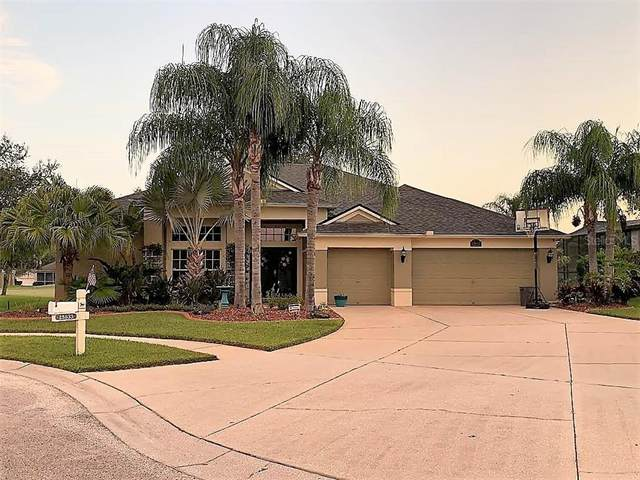 25633 Ferdinand Court, Wesley Chapel, FL 33544 (MLS #T3307399) :: Vacasa Real Estate