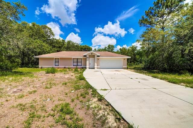 2783 W Woodthrush Street, Lecanto, FL 34461 (MLS #T3307488) :: Dalton Wade Real Estate Group