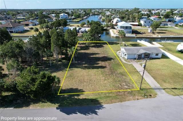 5111 Cedarbrook Lane, Hernando Beach, FL 34607 (MLS #T3307489) :: The Hustle and Heart Group