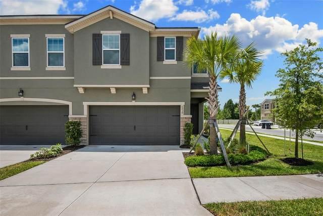 5716 Grand Sonata Avenue, Lutz, FL 33558 (MLS #T3307613) :: Frankenstein Home Team