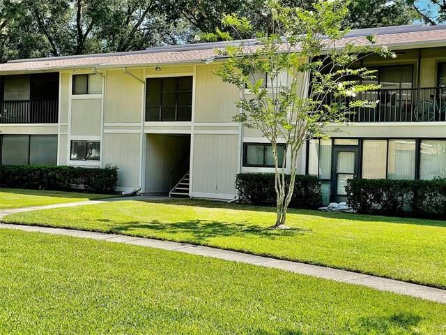 6012 Laketree Lane A, Temple Terrace, FL 33617 (MLS #T3307660) :: Pepine Realty