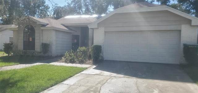 12121 Fruitwood Drive, Riverview, FL 33569 (MLS #T3307685) :: Cartwright Realty