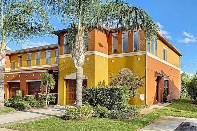30130 Mossbank Drive, Wesley Chapel, FL 33543 (MLS #T3307748) :: Expert Advisors Group