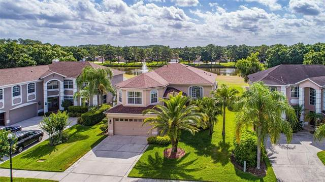 15613 Shoal Creek Place, Odessa, FL 33556 (MLS #T3307925) :: The Nathan Bangs Group