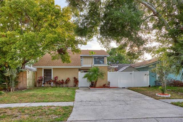 10306 Pennytree Place, Tampa, FL 33624 (MLS #T3307950) :: Zarghami Group