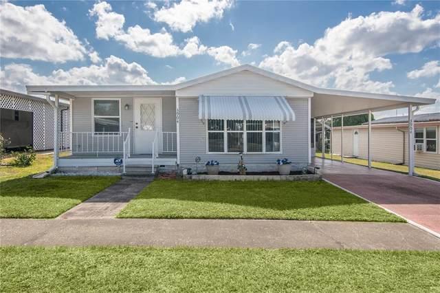 3904 Kim Drive, Wesley Chapel, FL 33543 (MLS #T3308127) :: Rabell Realty Group