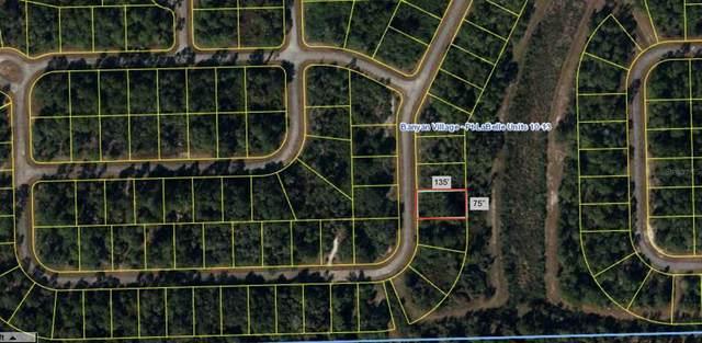 625 Nassau Circle, Labelle, FL 33935 (MLS #T3308146) :: Vacasa Real Estate