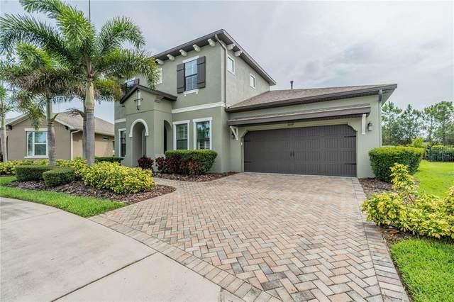 6649 Current Drive, Apollo Beach, FL 33572 (MLS #T3308258) :: Burwell Real Estate