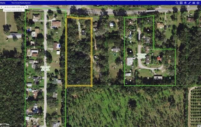 14907 Vernie Lane, Dade City, FL 33523 (MLS #T3308596) :: Everlane Realty