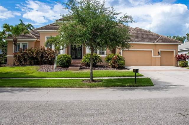 6114 Avocetridge Drive, Lithia, FL 33547 (MLS #T3308655) :: Alpha Equity Team