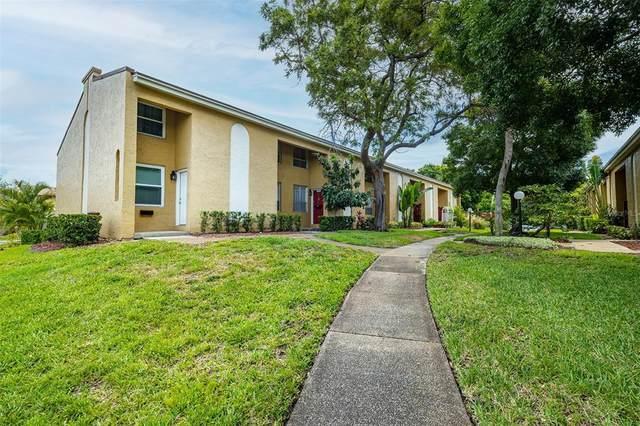 4315 La Riviera Court, Tampa, FL 33611 (MLS #T3308860) :: Alpha Equity Team