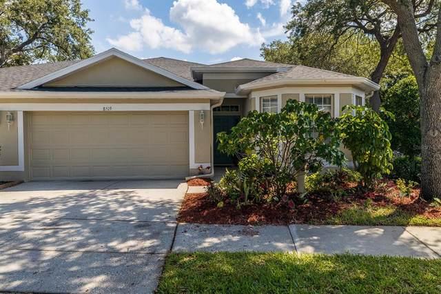 8519 Acorn Ridge Court, Tampa, FL 33625 (MLS #T3309037) :: Coldwell Banker Vanguard Realty