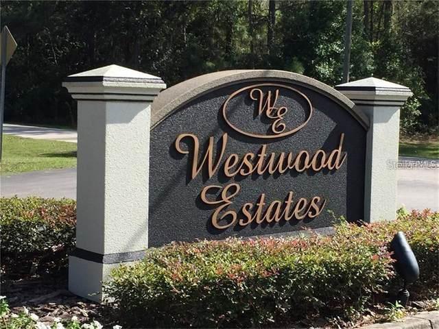 8001 Woodleaf Boulevard, Wesley Chapel, FL 33544 (MLS #T3309067) :: The Hustle and Heart Group