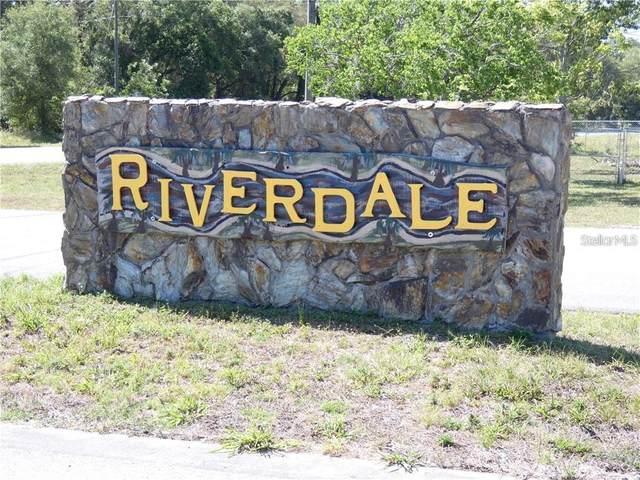 3480 Riverdale Drive, Dade City, FL 33523 (MLS #T3309129) :: Armel Real Estate