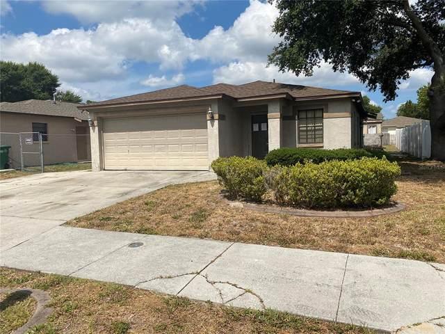 8438 N River Dune Street, Tampa, FL 33617 (MLS #T3309165) :: Delgado Home Team at Keller Williams
