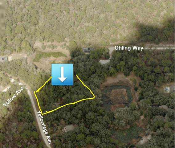 10475 Yellowlegs Avenue, Weeki Wachee, FL 34614 (MLS #T3309179) :: The Robertson Real Estate Group