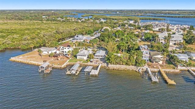 3528 W Shell Point Road, Ruskin, FL 33570 (MLS #T3309246) :: Your Florida House Team