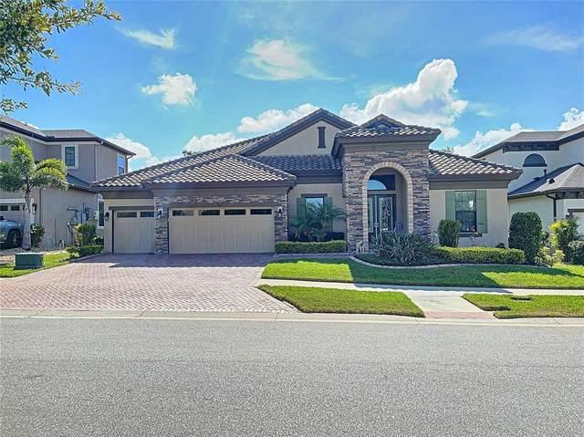 907 Floresta Street, Brandon, FL 33511 (MLS #T3309359) :: Everlane Realty