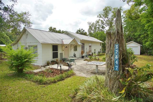 32847 Pennsylvania Avenue, San Antonio, FL 33576 (MLS #T3309402) :: Everlane Realty