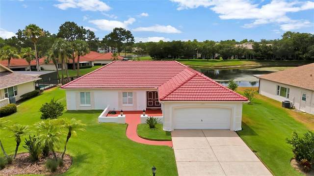 9109 Cypresswood Circle, Tampa, FL 33647 (MLS #T3309500) :: CENTURY 21 OneBlue