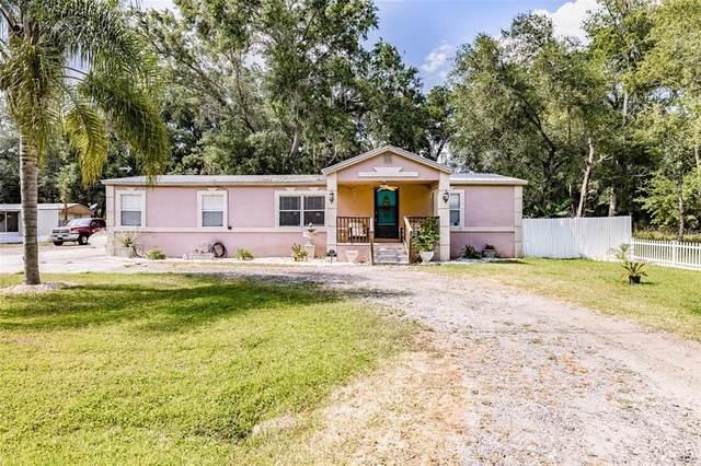 11318 Broadview Road, Seffner, FL 33584 (MLS #T3309522) :: Zarghami Group