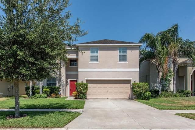 313 Shell Manor Drive, Ruskin, FL 33570 (MLS #T3309557) :: Team Bohannon