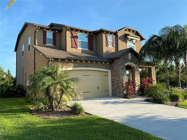 29008 Perilli Place, Wesley Chapel, FL 33543 (MLS #T3309636) :: Delgado Home Team at Keller Williams